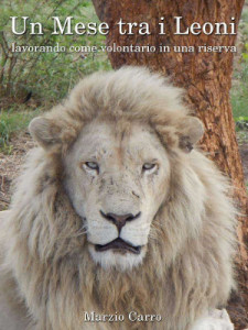 un mese tra i leoni