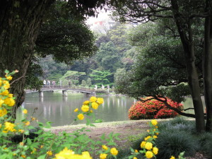 japan tokyo shinjuku garden