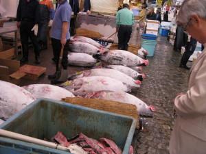 japan tokyo tsukiji fish market