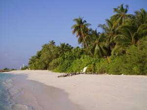 maldive-north-male-atoll-asdu-3