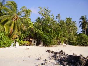 maldive-north-male-atoll-asdu-5