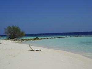 maldive-north-male-atoll-asdu-b