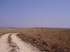 malawi nyika 3